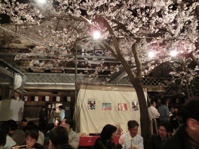 中村座花見4.jpg